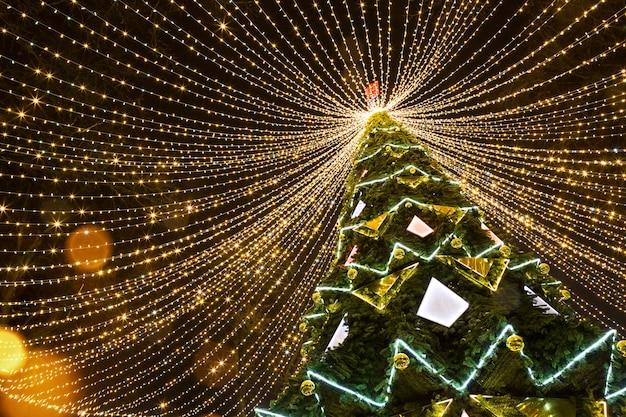 조명 garlands의 모자와 함께 공원에서 높은 도시 크리스마스 트리, 거리에서 밤에 빛납니다.