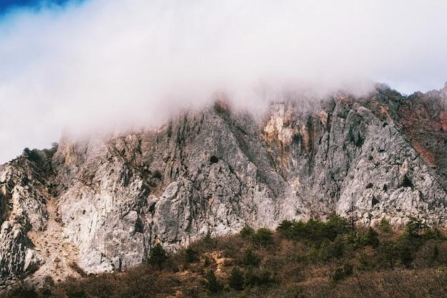 日中の霧深い天候の高い崖