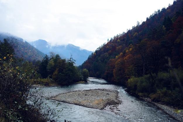 秋の風景の中の高い森の山々