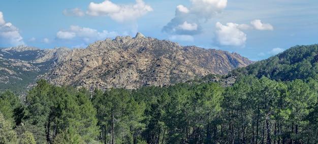 스페인 마드리드 시골의 높은 산과 성장하는 초목