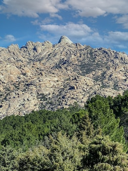 High mountains and growing vegetation in the countryside of madrid in spain