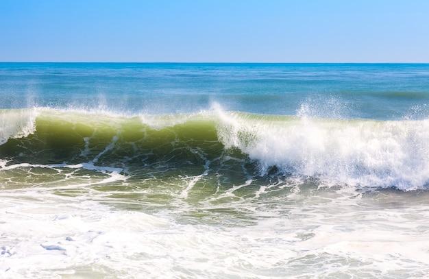 High sea wave