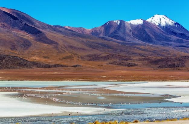 ボリビアの高い雪山