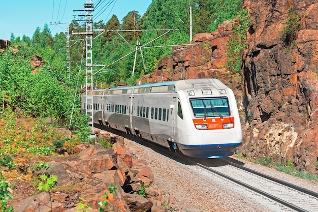 High-speed electric train. the railway passes in a rocky canyon in the forest.