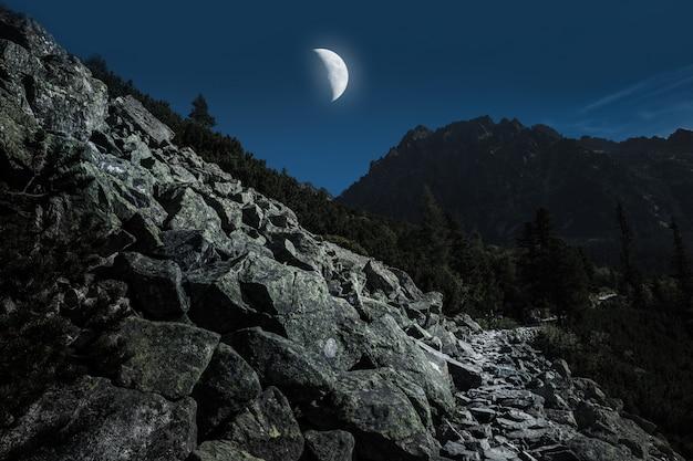 Высокие татры с походной тропы в лунном свете