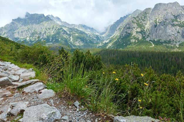 Высокие татры летом пасмурный вид на горы