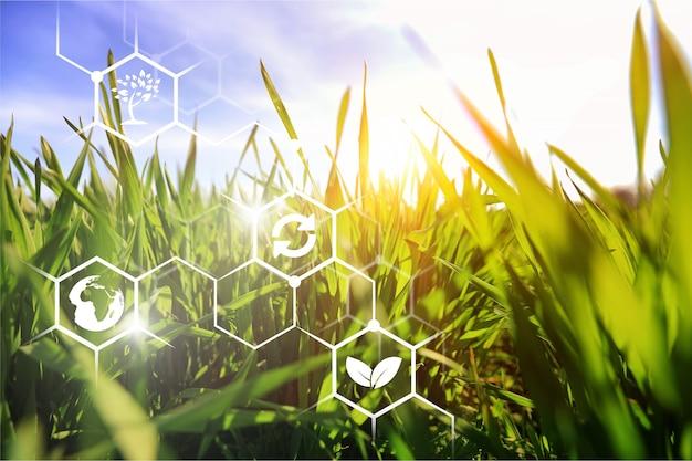 農産業の概念における高度な技術と革新