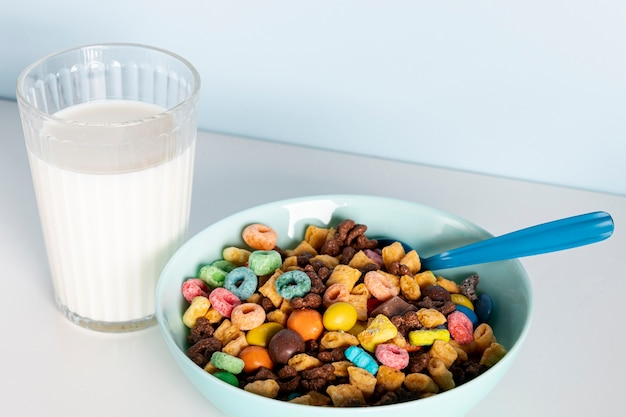 High view bowl of delicious fresh cereals and milk