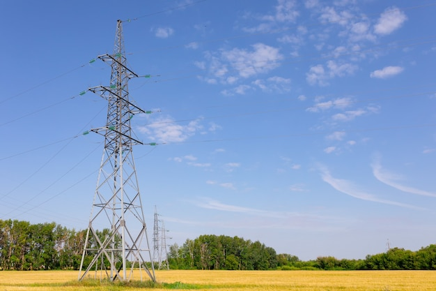 Линия высокого напряжения с столбами на фоне поля, леса и неба. летнее фото