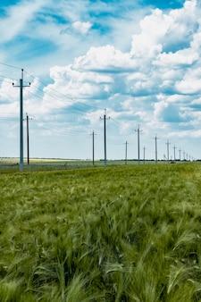 Опоры высокого напряжения для передачи электроэнергии на ржаном поле