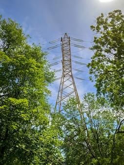 Столб высокого напряжения вокруг зеленых деревьев на закате летний пейзаж. концепция зеленой энергии. линия высокого напряжения
