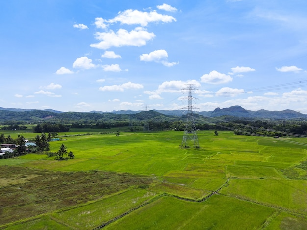 고전압 포스트, 산 숲의 고전압 타워 하늘 배경, 녹색 논이 있는 시골에 대한 전기 기둥 및 전력 전송선