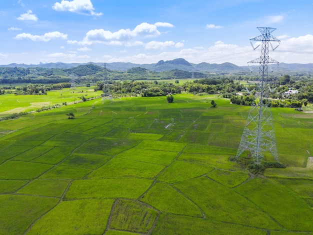 High voltage post, high voltage tower with green rice field on the mountain forest blue sky background