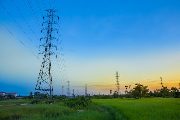 High-voltage post tower in jasmine rice field at twilight time background.