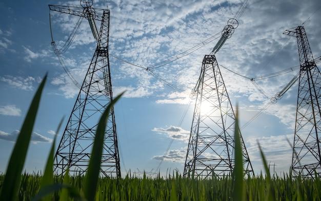 緑の草が付いている高圧送電線高圧送電線の緑のエネルギー概念高電圧