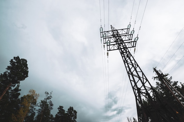 High voltage power lines among trees under cloudy sky