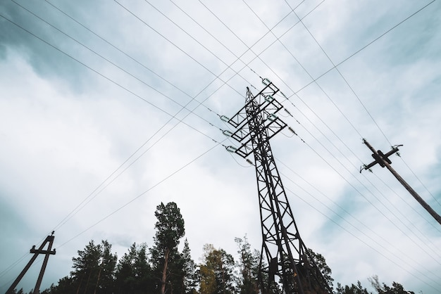 曇り空の下の木々の間の高圧送電線