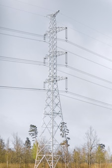 High voltage tower in a forest zone, vertical image