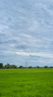 High voltage transmission towers construction with farm landscape