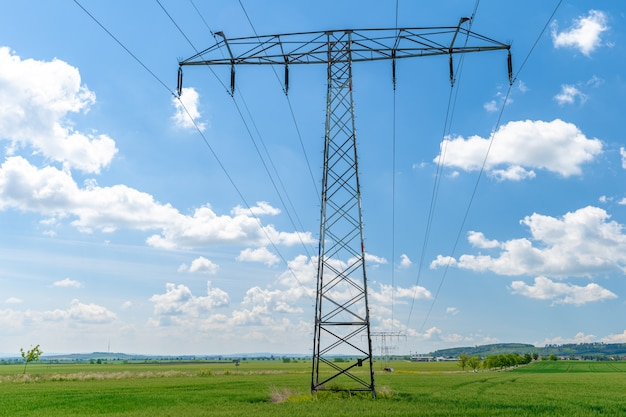 Высоковольтные провода над полем с сельскохозяйственными растениями