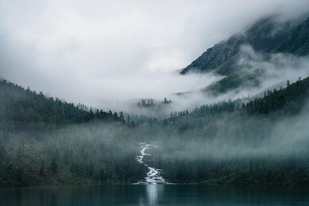 Ручей хайленд протекает через лес и впадает в горное озеро.