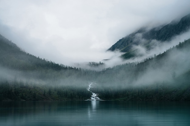 Highland lake and foggy forest