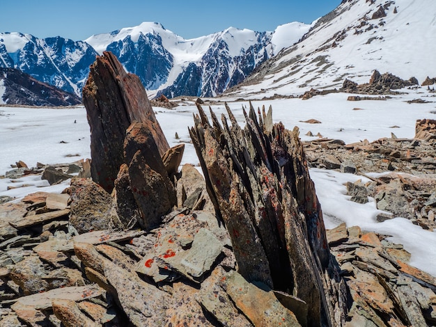 珍しい形のとがった石のある高原の風景。日光の下で青い空の下で雪の中で大きなひびの入った先の尖った石のクローズアップと素晴らしい風光明媚な山の風景。鋭い岩。