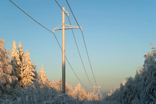 冬の森の空き地を通る高電圧送電線