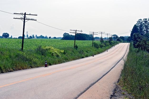 Шоссе резки кукурузы посадки