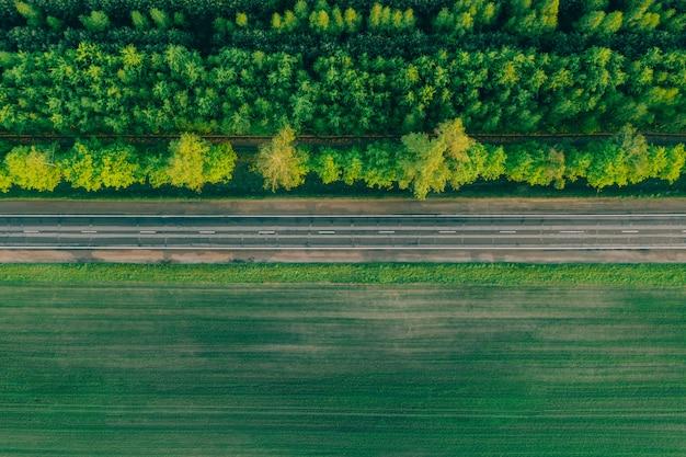 Шоссе в лесу на другой стороне дороги.