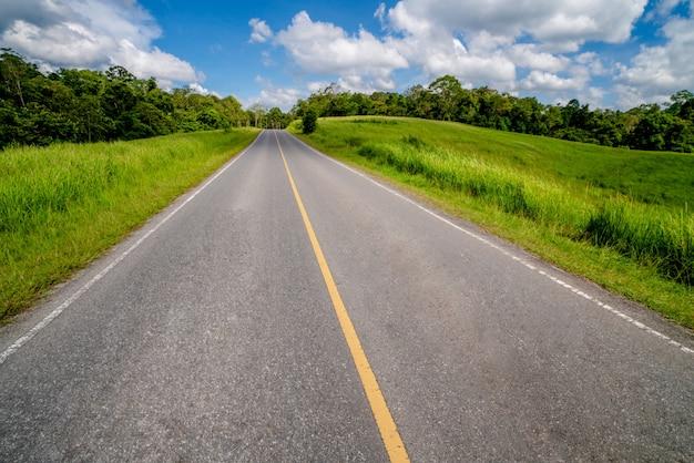 Дорога шоссе через зеленую траву под голубым небом.