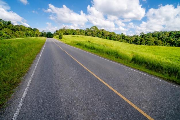 青い空の下で緑の草を通る高速道路道路。