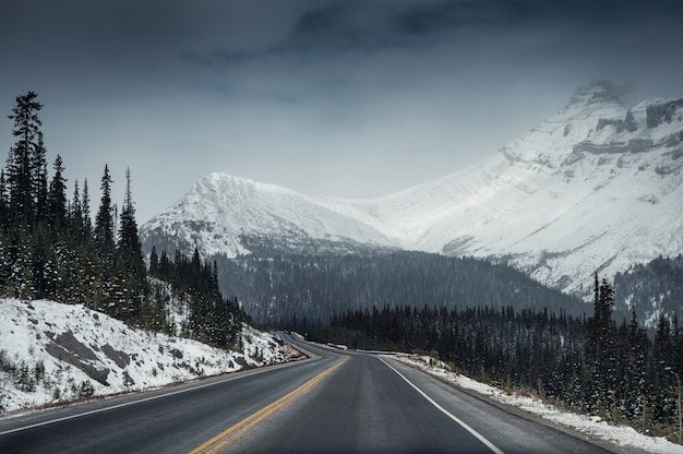 Highway road with snow mountain in gloomy at icefields parkway