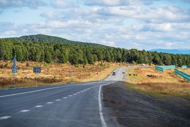 Seminsky pass를 통과하는 고속도로