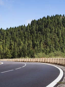 Highway with beautiful trees landscape