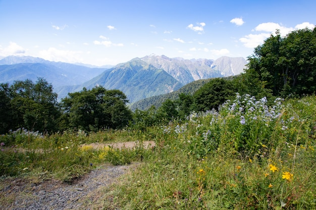 Hike, hiking and adventure. travel trekking in the mountains in the summer in nature.