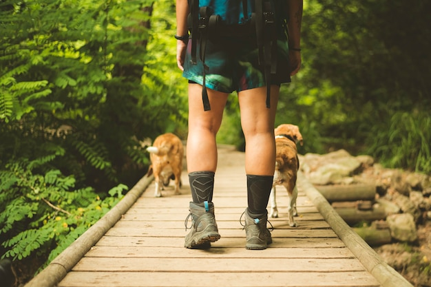 Hiker crossing across a bridge with beagle dog.