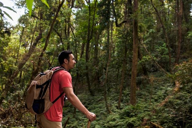 Escursionista sulla collina nella giungla