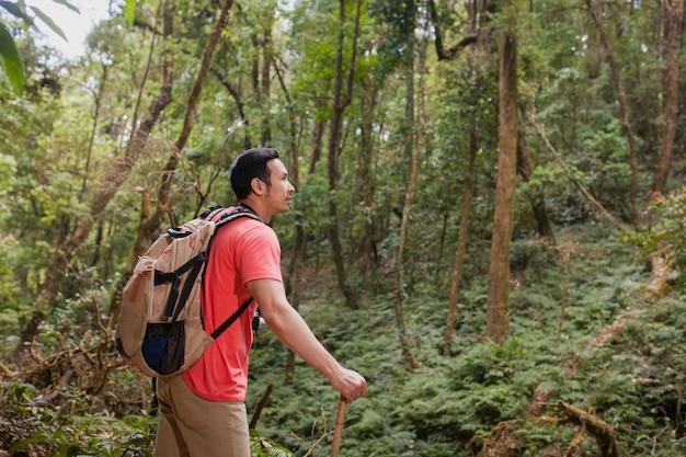 Escursionista in giungla