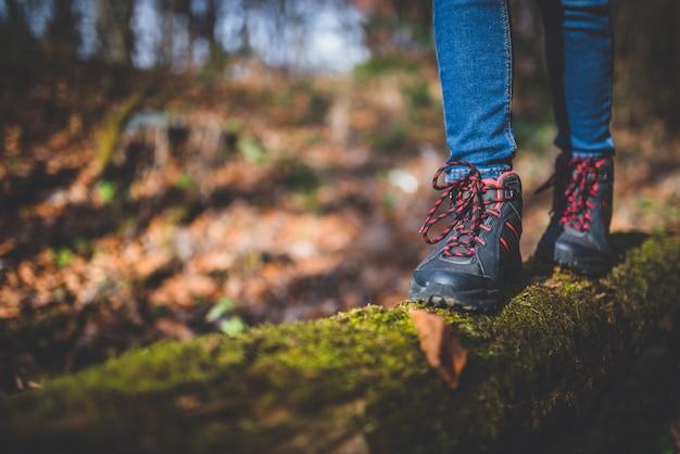 Hiker shoes on old tree log