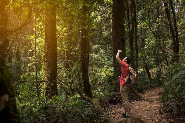 Escursionista di scattare foto di un albero alto