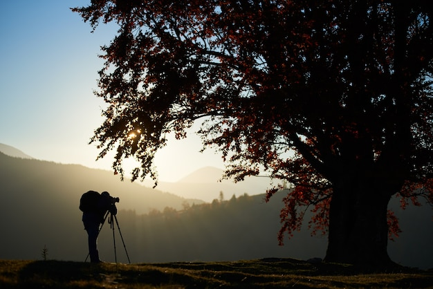 Hiker tourist man with camera on grassy valley on background of mountain landscape under big tree.