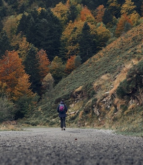 秋のシーズン中に森の中の小道を旅するハイカー