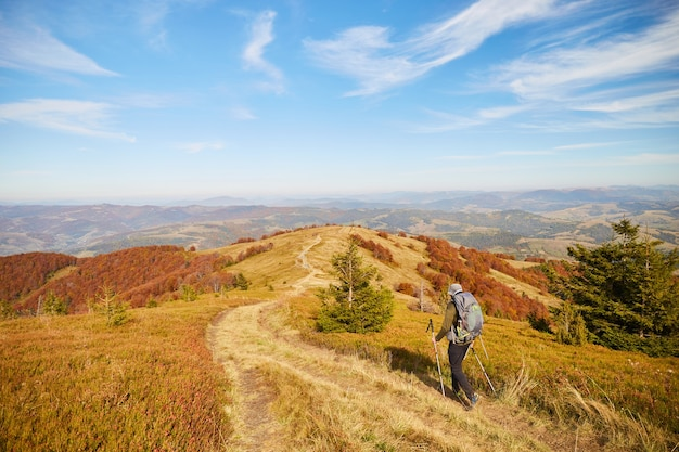 秋の山でバックパックとハイカー。カルパティア山脈の美しい秋の森。ハイキング旅行と冒険。