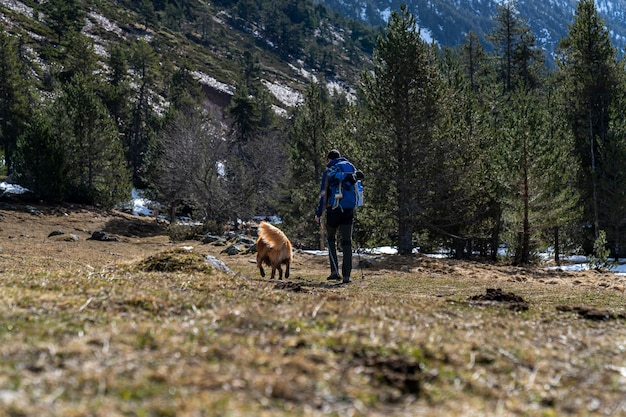 Hiker with his dog on the mountain in catalaan pyrenees.