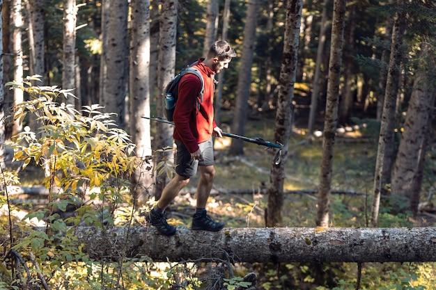 Hiker young man walking through the fallen tree in the mountain.