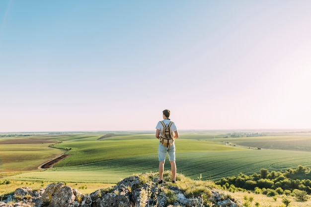 Вид сзади мужчины hiker с рюкзаком, глядя на зеленый пейзаж катания