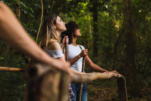 Hikers in the jungle looking at the trees. women on the trail looking the nature. young hikers in the jungle. concept of sport and outdoor.