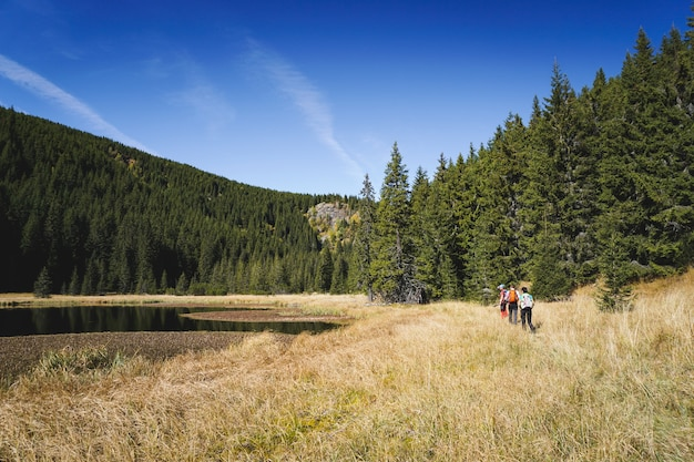 Hikers on a trail along a scenic landscape with mountains, trees and a lake