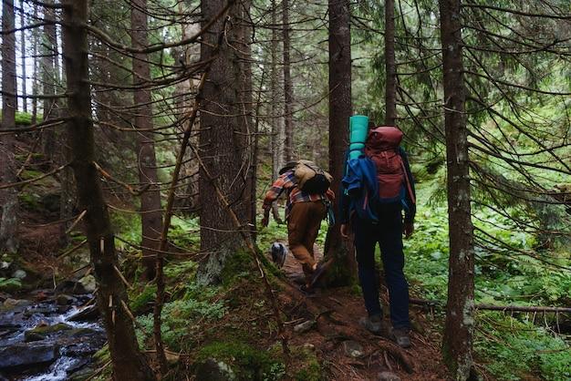 Путешественники идут по лесной тропе с походными рюкзаками. треккинг на открытом воздухе на гору.